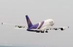 mori15moriさんが、中部国際空港で撮影したタイ国際航空 A380-841の航空フォト(写真)