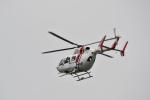 ja0hleさんが、岐阜基地で撮影した川崎重工業 BK117C-2の航空フォト(写真)