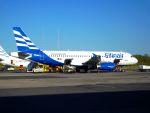 まいけるさんが、コルフ・イオアニス・カポディストリアス空港で撮影したエリンエア A320-231の航空フォト(写真)