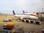 まいけるさんが、成田国際空港で撮影したユナイテッド航空 737-824の航空フォト(写真)