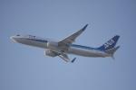 いっとくさんが、伊丹空港で撮影した全日空 737-881の航空フォト(写真)