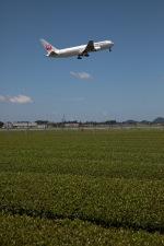 GNPさんが、鹿児島空港で撮影した日本航空 767-346/ERの航空フォト(写真)