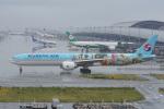 神宮寺ももさんが、関西国際空港で撮影した大韓航空 777-3B5/ERの航空フォト(写真)