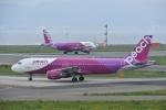 よしポンさんが、関西国際空港で撮影したピーチ A320-214の航空フォト(写真)