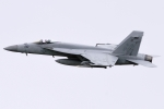 Flankerさんが、厚木飛行場で撮影したアメリカ海軍 F/A-18E Super Hornetの航空フォト(写真)