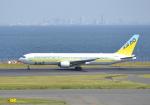 雲霧さんが、羽田空港で撮影したAIR DO 767-33A/ERの航空フォト(写真)