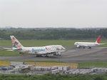 hachiさんが、成田国際空港で撮影した日本航空 747-346の航空フォト(写真)