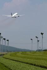 GNPさんが、鹿児島空港で撮影した全日空 777-281の航空フォト(写真)