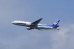 気分屋さんが、羽田空港で撮影した全日空 777-281/ERの航空フォト(写真)