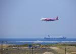 タミーさんが、関西国際空港で撮影したピーチ A320-214の航空フォト(写真)