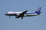 sin747さんが、羽田空港で撮影した全日空 A320-211の航空フォト(写真)