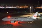 たにかわさんが、羽田空港で撮影した日本航空 787-8 Dreamlinerの航空フォト(写真)