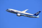 気分屋さんが、羽田空港で撮影した全日空 787-8 Dreamlinerの航空フォト(写真)