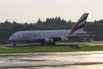 TAKA-Kさんが、成田国際空港で撮影したエミレーツ航空 A380-861の航空フォト(写真)
