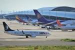 kiraboshi787さんが、関西国際空港で撮影した山東航空 737-85Nの航空フォト(写真)