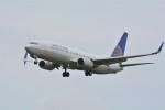 sukiさんが、成田国際空港で撮影したユナイテッド航空 737-824の航空フォト(写真)