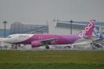 amagoさんが、成田国際空港で撮影したピーチ A320-214の航空フォト(写真)