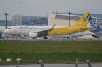amagoさんが、成田国際空港で撮影したバニラエア A320-214の航空フォト(写真)