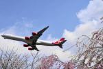 Orange linerさんが、成田国際空港で撮影したヴァージン・アトランティック航空 A340-642の航空フォト(写真)