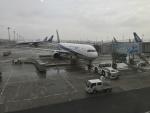 nobu2000さんが、羽田空港で撮影した全日空 767-381/ERの航空フォト(写真)