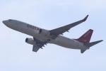 セブンさんが、関西国際空港で撮影したイースター航空 737-86Jの航空フォト(写真)