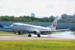 JA7NPさんが、伊丹空港で撮影した日本航空 737-846の航空フォト(写真)