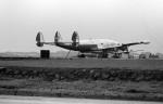 ノビタ君さんが、立川飛行場で撮影したアメリカ海軍 C-121J Super Constellation (R7V-1/L-1049B)の航空フォト(写真)