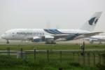 ばっきーさんが、成田国際空港で撮影したマレーシア航空 A380-841の航空フォト(写真)