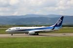 にしやんさんが、旭川空港で撮影した全日空 737-881の航空フォト(写真)