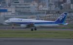 mototripさんが、福岡空港で撮影した全日空 A320-211の航空フォト(写真)