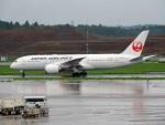 きつねさんが、成田国際空港で撮影した日本航空 787-8 Dreamlinerの航空フォト(写真)