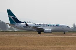 チャッピー・シミズさんが、アボッツフォード国際空港で撮影したウェストジェット 737-281/Advの航空フォト(写真)