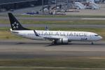 みるぽんたさんが、羽田空港で撮影した全日空 737-881の航空フォト(写真)