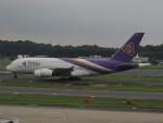 さゆりんごさんが、成田国際空港で撮影したタイ国際航空 A380-841の航空フォト(写真)