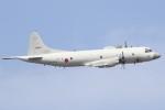 masa707さんが、那覇空港で撮影した海上自衛隊 P-3Cの航空フォト(写真)