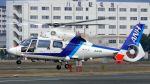 航空見聞録さんが、八尾空港で撮影したオールニッポンヘリコプター AS365N2 Dauphin 2の航空フォト(写真)