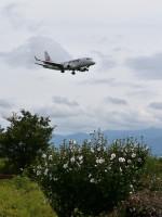 md87さんが、松本空港で撮影したジェイ・エア ERJ-170-100 (ERJ-170STD)の航空フォト(写真)