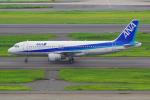 PASSENGERさんが、羽田空港で撮影した全日空 A320-211の航空フォト(写真)