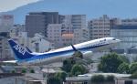 Take51さんが、伊丹空港で撮影した全日空 737-881の航空フォト(写真)