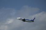 Fly Yokotayaさんが、伊丹空港で撮影したANAウイングス 737-5L9の航空フォト(写真)