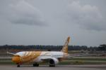 Fly Yokotayaさんが、シンガポール・チャンギ国際空港で撮影したスクート 787-9の航空フォト(写真)