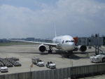 国府宮さんが、伊丹空港で撮影した日本航空 777-246の航空フォト(写真)