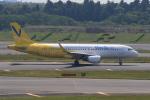 みるぽんたさんが、成田国際空港で撮影したバニラエア A320-214の航空フォト(写真)