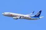 キイロイトリ1005fさんが、伊丹空港で撮影した全日空 737-881の航空フォト(写真)