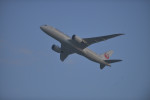 fukucyanさんが、関西国際空港で撮影した日本航空 787-8 Dreamlinerの航空フォト(写真)
