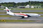 turenoアカクロさんが、成田国際空港で撮影したマレーシア航空 737-8H6の航空フォト(写真)