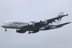 まえちんさんが、成田国際空港で撮影したマレーシア航空 A380-841の航空フォト(写真)