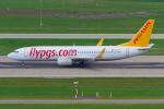 PASSENGERさんが、チューリッヒ空港で撮影したペガサス・エアラインズ 737-82Rの航空フォト(写真)