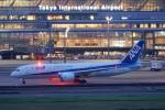 pringlesさんが、羽田空港で撮影した全日空 787-8 Dreamlinerの航空フォト(写真)