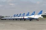 nob24kenさんが、千歳基地で撮影した航空自衛隊 T-4の航空フォト(写真)